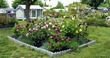 Rose Garden Design Ideas Rose Garden Design Ideas
