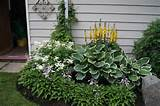 Deep Roots Garden Design - Garden Tips - Edmonton Garden and ...