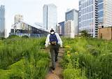 ... Rooftop Garden Designs Changing City Architecture with Green Ideas