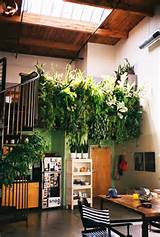 35 Indoor Garden Ideas to Green Your Home DesignRulz.com