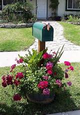 ... Gardens Ideas, Cant Wait, Whiskey Barrels, Mailbox Flower, Mailbox
