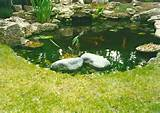 small pond with grass boulder edge