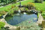 garden water features ideas awe inspiring home interior decor ideas