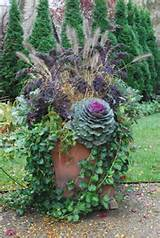 ... garden designer blog attached to image with more planter ideas in