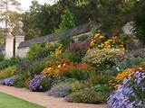 photo gallery of the best considerations for perennial garden design