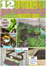 succulent garden fry sauce grits constructing a container garden