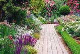choosing the right perennial flowers and plants for your garden home