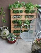 ... ://www.apartmenttherapy.com/diy-small-space-pallet-garden-143775 Like