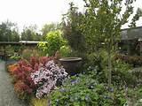 Fall Garden | Great Gardens & Ideas | Pinterest