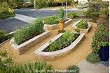 stone raised bed vegetable beds in california front yard garden lawn
