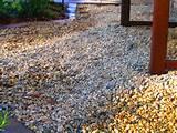 gravel patio for english garden eden makers blog by shirley bovshow