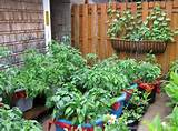 ... > Container Gardening > Apartment Patio Container Gardening Ideas