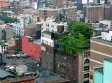 Design Squish Blog: NYC ROOFTOP GARDENS AND HOUSES - new york ...