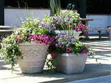 outdoor flower pots ceramic flower pots gallery