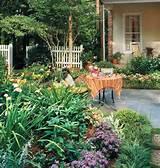 necesito ideas para un jardin | Cuidar de tus plantas es facilisimo ...