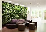 Eco Garden Design Ideas - Modern Home Office Design Ideas