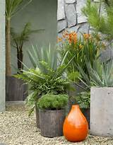 front garden ideas how to get kerb appeal with plants the life