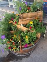 Wine barrel planter | Gardening Ideas | Pinterest