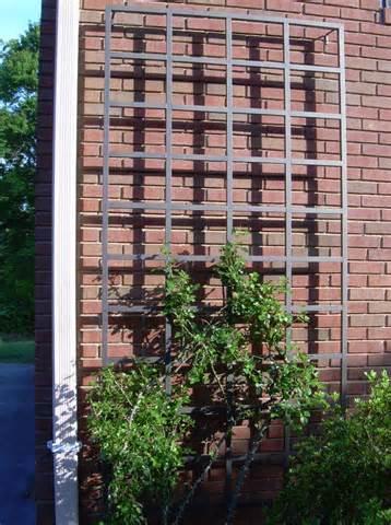 Arbors/Trellises – Lisbon Wall Trellis – GV-LIBWT