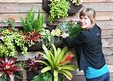 Easy to create vertical garden ideas for your home - Hometone