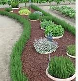 Herb garden in sunken pots | Garden Ideas | Pinterest