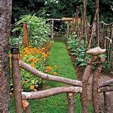 Rustic fencing. Beautiful garden. | Garden > Flowers Trees Shrubs | P ...