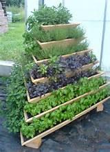 pyramid-garden-planter, plantar-ervas-em-casa, erva-aromatica-em-casa ...