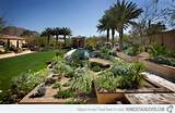 17 Parched Desert Landscaping Ideas | Home Design Lover
