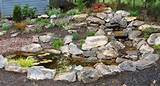 plant a rock garden with or without a water feature rock gardens