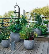 Vegetable and Herb Container Garden via Better Homes and Gardens