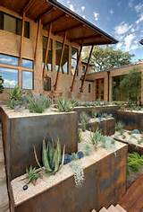 ideas metals austin texas front yards succulent garden gardens ...