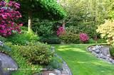 花园高清图片素材 - 素材公社 tooopen.com
