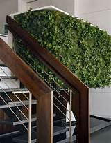 green vertical garden with stairs 20 Cool Vertical Garden Walls