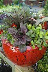 Matching Plants to Container - Winter Container Idea for the South ...