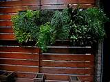... :Indoor Living Wall Planters Ideas Best Indoor Living Wall Planters