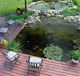 53 Cool Backyard Pond Design Ideas - DigsDigs