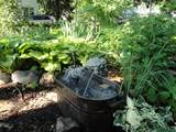 add scent and sound for a great garden my northern garden