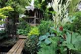 garden nick wilson 57 has created this stunning jungle garden