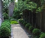 gardenista gravel path garden pinterest