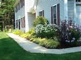use arrow keys to view more gardens swipe photo to view more gardens