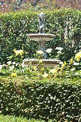 fountain garden ideas pinterest