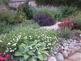 flower bed ideas for full sun pictures - Beautiful black and white ...