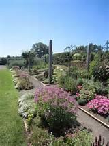 Allen Smith garden | How Does Your Garden Grow? | Pinterest