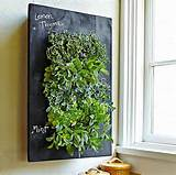 The piece : Chalkboard Wall Planter