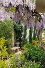 Secret garden | Garden Ideas | Pinterest
