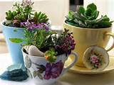 diy-home-garden-ideas-6