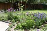 North Texas Perennials Flower Gardens