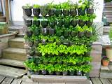 Researching: DIY vertical garden ideas that actually look good