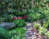 beautiful shade garden backyard ideas pinterest