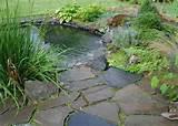 Garden Pond Ideas | Landscaping - Gardening Ideas